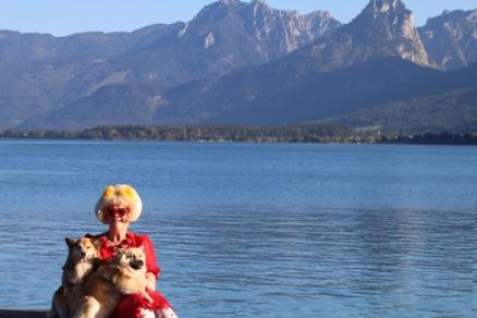 austria-icelandic-dogs-gre-parelmoer-2