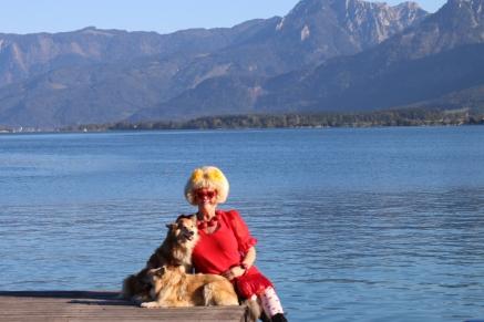 austria-icelandic-dogs-gre-parelmoer-4