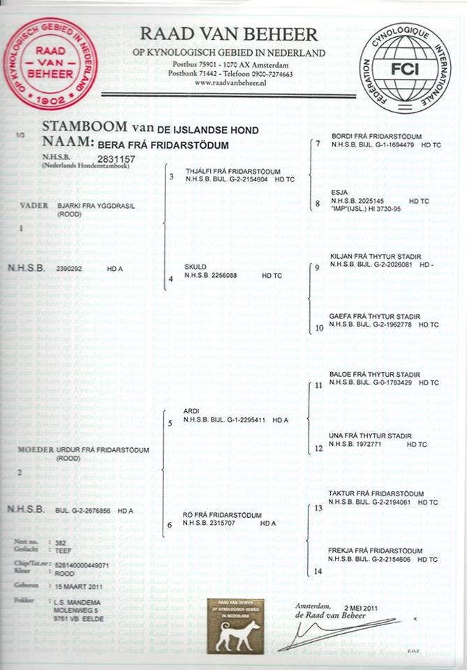 miss-bera-stamboom
